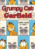 Garfield contre Grumpy cat